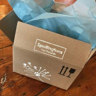 Dog Gift Boxes