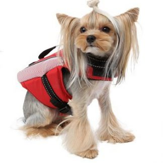 Reflecting Life Vest on Yorkie