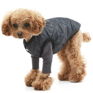 Padded Vest for Dogs Puppy Angel Black
