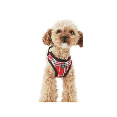 Red Plaid Harness on dog