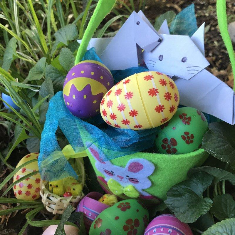 Shenzi and Tikki celebrate Easter in Lockdown