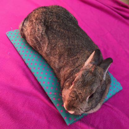 Pet Cooling Pad with Bunny